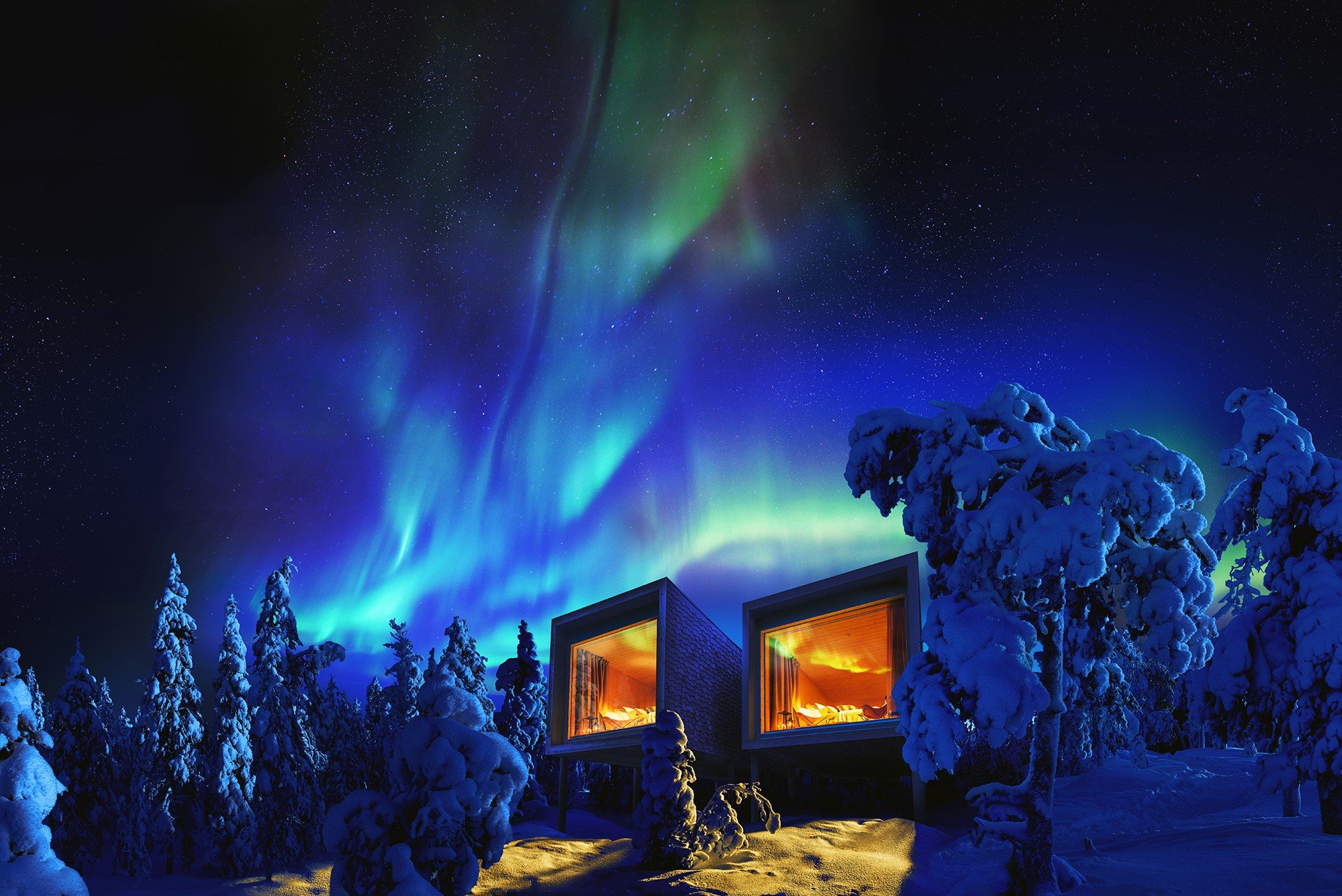 Arctic-TreeHouse.jpg