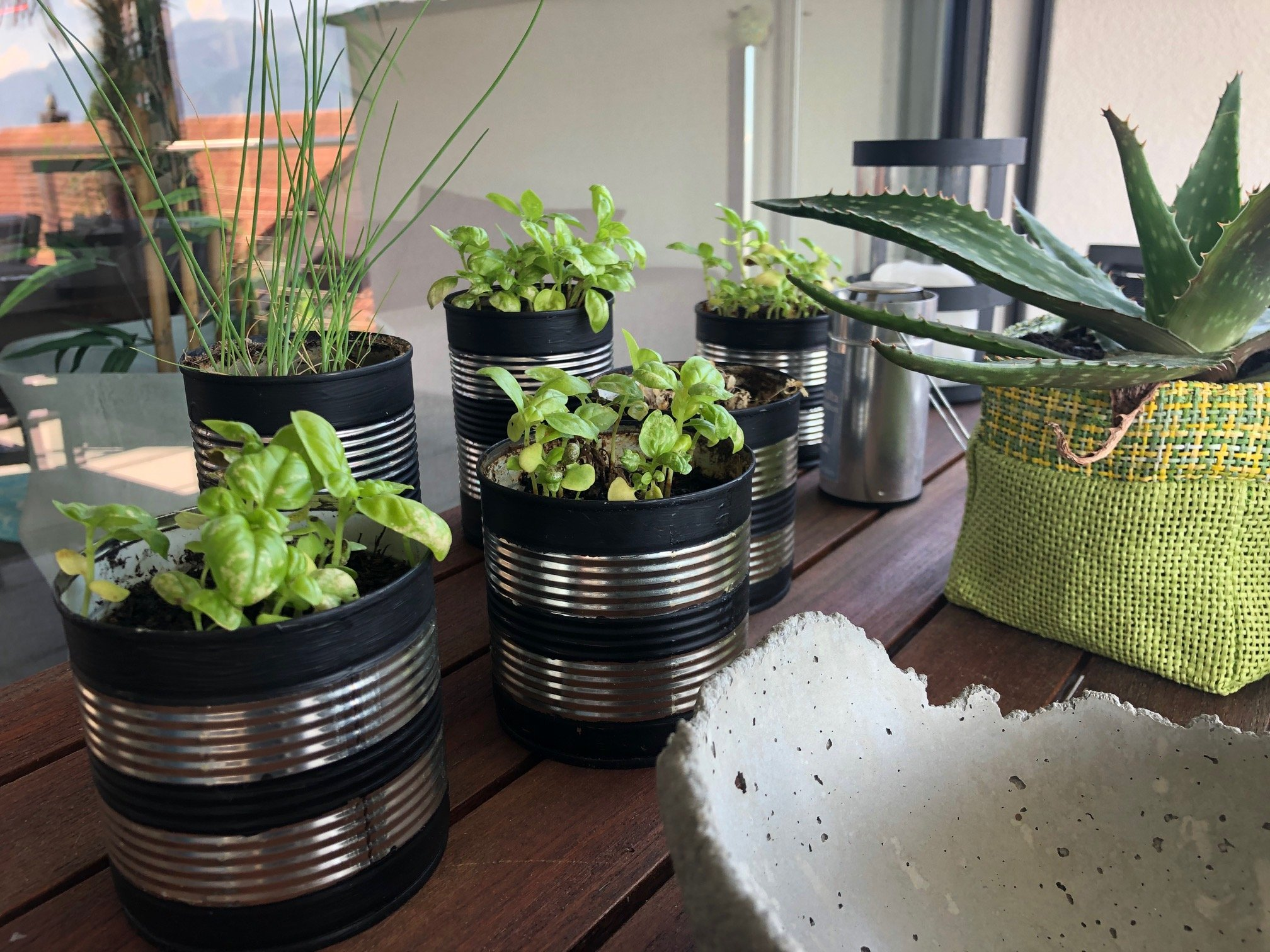 Ideen für den Kräutergarten