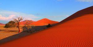 Virtuelle Afrikareise zum Wegträumen und Staunen